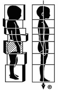 米国認定ロルファー ロルフィングの日本元祖ロルフィングトレーナー宮尾